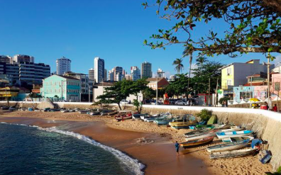 Going Nuts for Brazil – an Odyssey of Six Parts